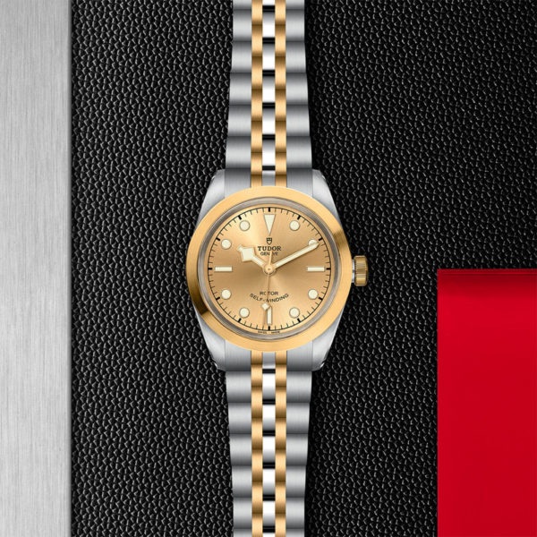 TUDOR Black Bay 32 S&G Watch with 32 mm steel case, steel and gold bracelet. In store flat lay.