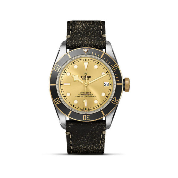 TUDOR Black Bay S&G Watch with 41 mm steel case, aged leather strap. In upright position, white background.