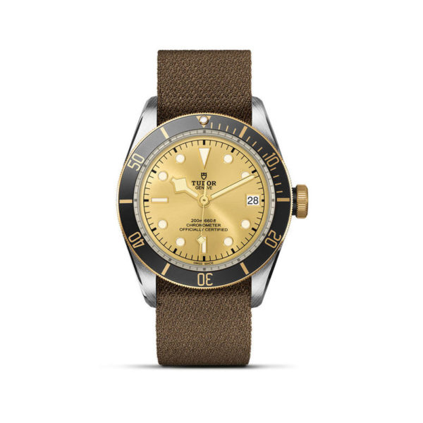 TUDOR Black Bay S&G Watch with 41 mm steel case, fabric strap. In upright position, white background.
