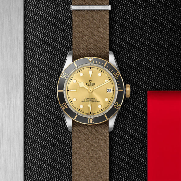 TUDOR Black Bay S&G Watch with 41 mm steel case, fabric strap. In store flat lay.