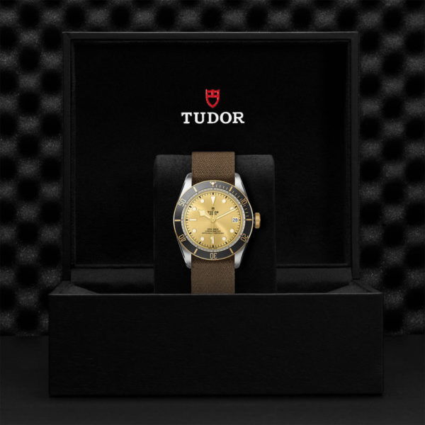 TUDOR Black Bay S&G Watch with 41 mm steel case, fabric strap. In presentation box.